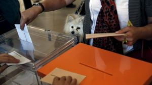 a-woman-votes-with-her-dog-inside-a-bag-at-a-polling-station-during-regional-and-municipal-elections-in-madrid_5345011