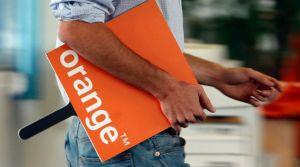 orange-10_5352045