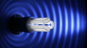 ampoule-lampe-basse-consommation_389653
