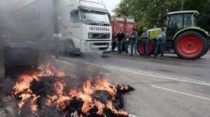 les-eleveurs-bloquent-l-acces-aux-vehicules-en-protestant-sur-un-pont-entre-la-france-et-l-allemagne-a-strasbourg-le-27-juillet-2015_5388815