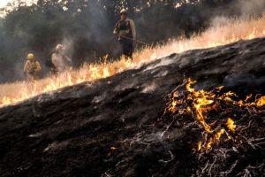 les-pompiers-tentent-de-circonscrire-le-feu-dans-le-comte-de-lake_5392149