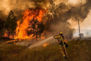 pompier-incendie-californie_5391863